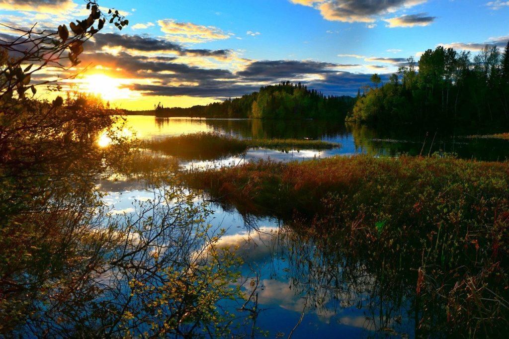 landscape, nature, environment
